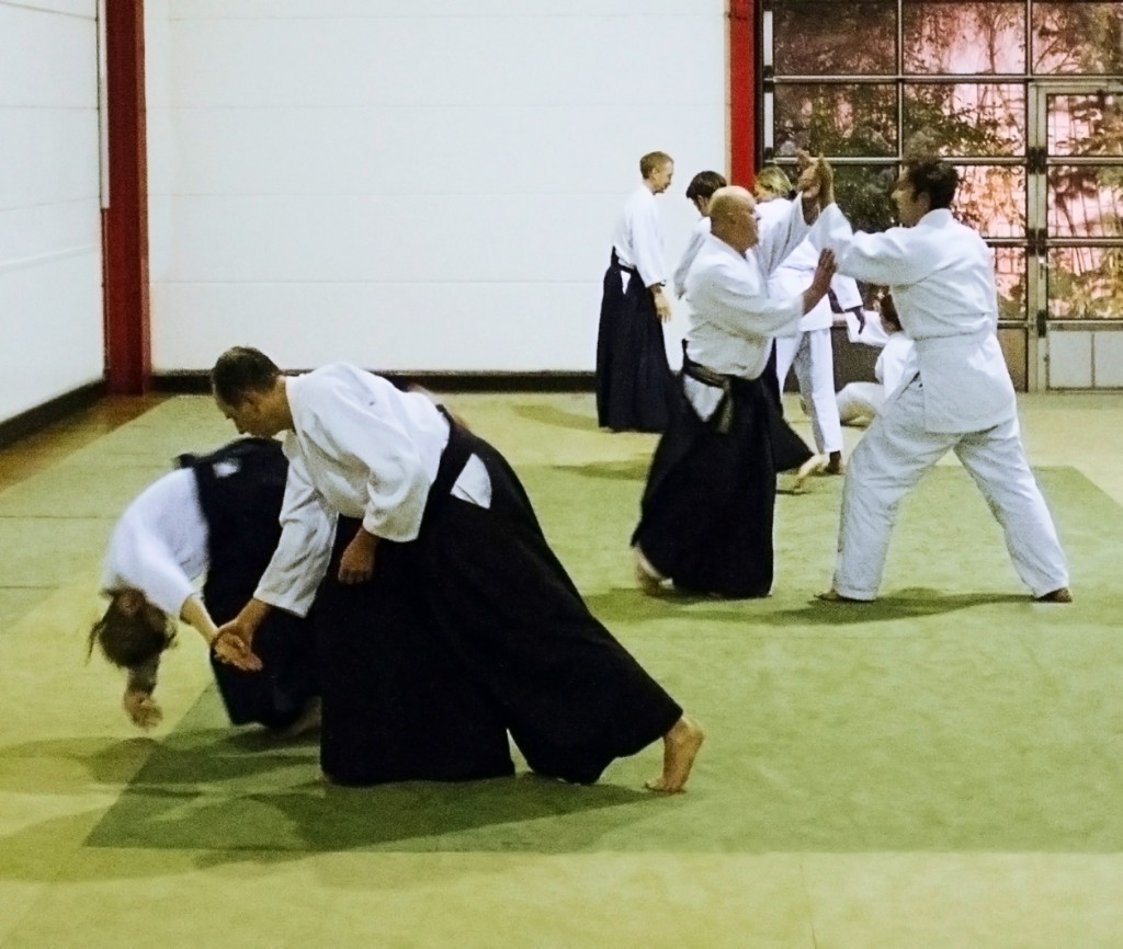 aikido_training